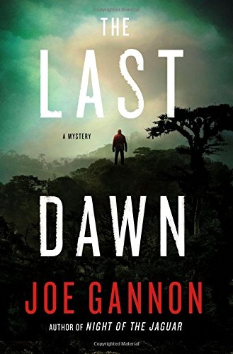 The Last Dawn by Joe Gannon