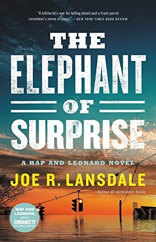 The Elephant of Surprise by Jon Lansdale